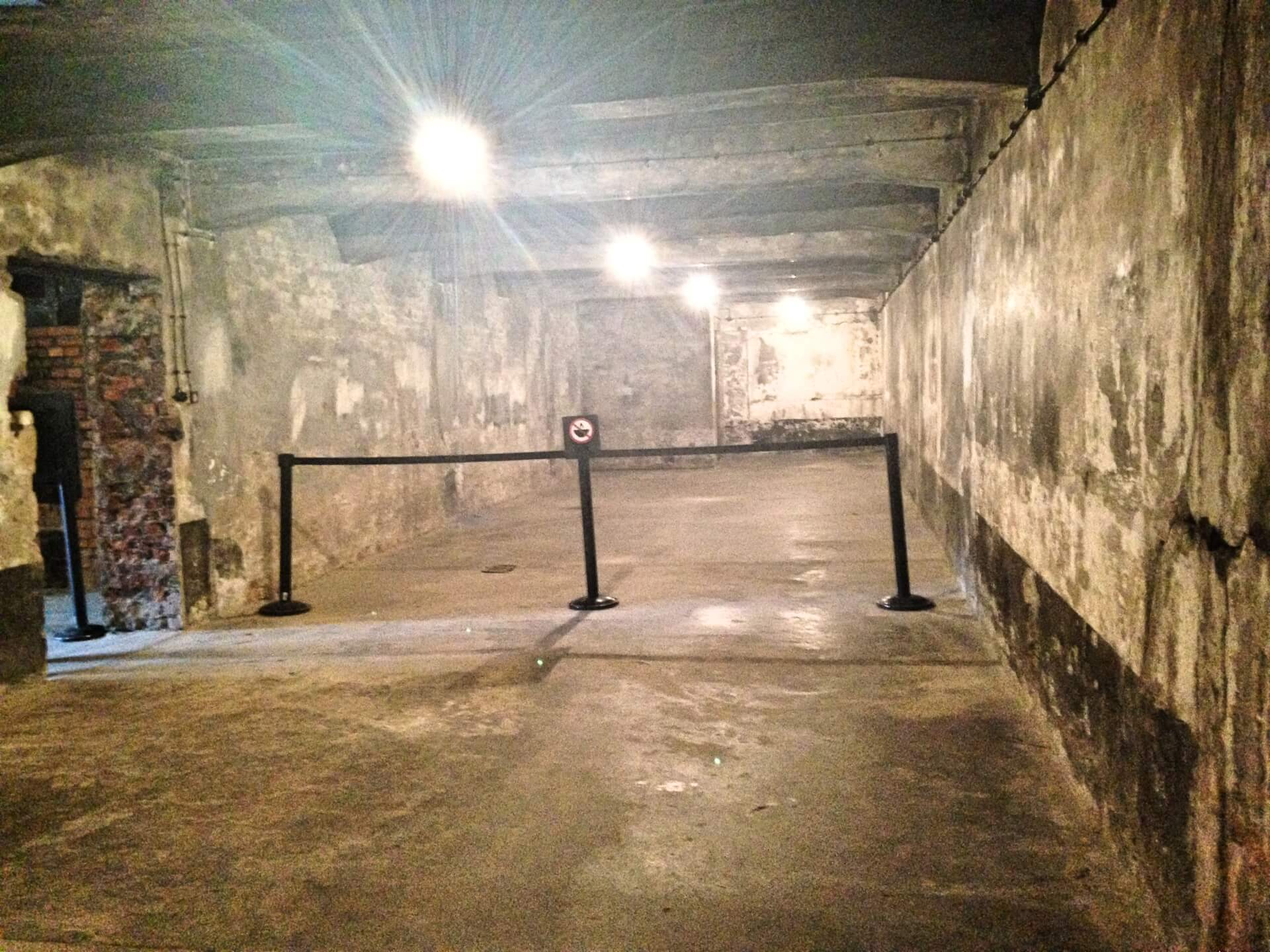 "The gas chambers where hundreds of prisoners were stuffed and told they were going to be ""showered"". Instead, as soon as the prisoners entered, they locked the doors and released poisonous gas that killed them instantly"